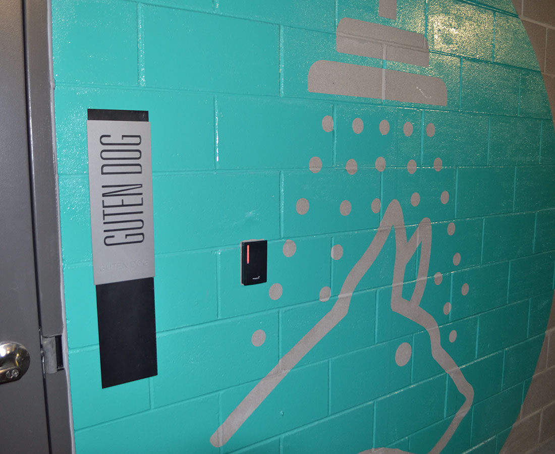 7S Denver Haus dog wash graphic interior