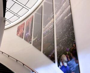 2colorado rockies graphic panels stairs skylight