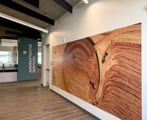 Interior wall mural by administrative services desk at Denver Water